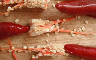 Piment paprika