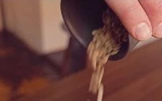 De la semence à l'assiette: le Melon d'Oka ft. Le Petit Mousso