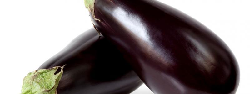 Aubergine Black - Bio