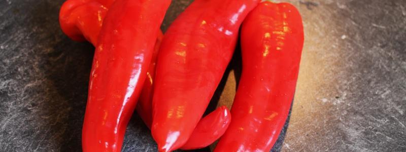 Poivron Marconi Red - Bio