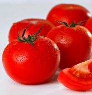 Tomate standard Moskovich - Bio