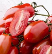 Tomate italienne San Marzano - Bio