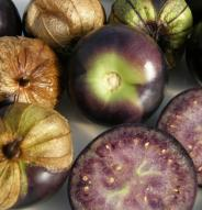 Tomatillo Purple - Bio