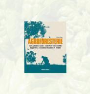 Agroforesterie, Les jardins oasis