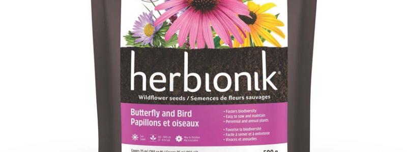 Semences de fleurs - Papillons et Oiseaux - 500 g