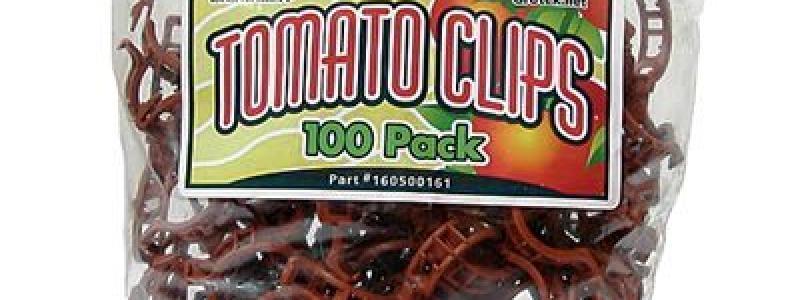 Attaches à tomates - 100/unités
