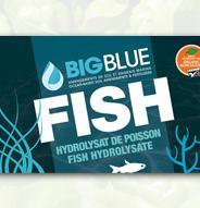Terreaux et engrais BIG BLUE FISH Hydrolysat de poisson ( 2-3-0 ) - 500ml