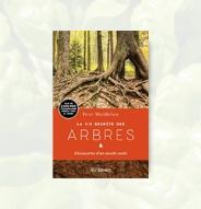 Librairie La vie secrète des arbres
