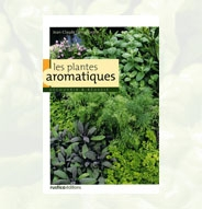 Plantes aromatiques (Les) – Découvrir et réussir